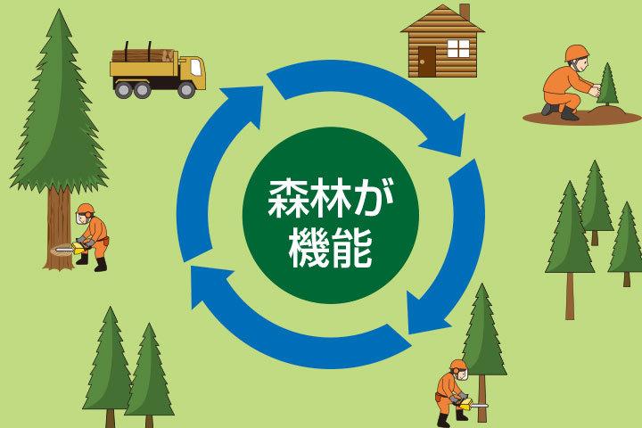 木造耐火構造のすすめ